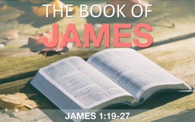 Sermon for Sunday 13th June 2021